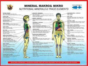 Mineral yg dibutuhkan tubuh